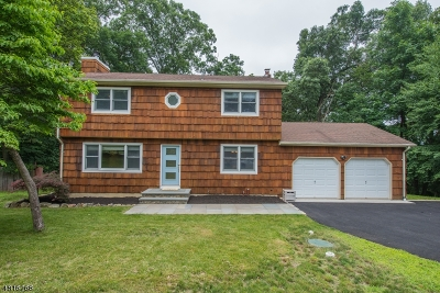Morris County Single Family Home For Sale: 10 Hillcrest Drive