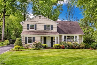 New Providence Single Family Home For Sale: 37 Delwick Ln