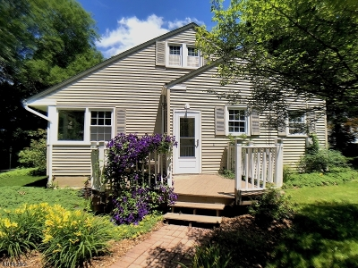 Bernards Twp. Single Family Home For Sale: 11 Cedar St