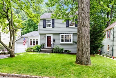 Summit Single Family Home For Sale: 101 W End Ave