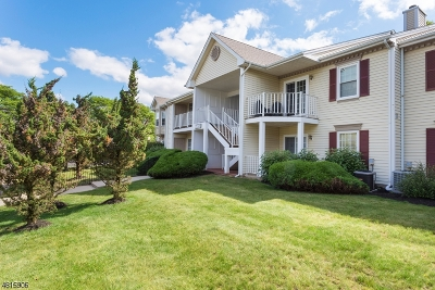 Bridgewater Twp. Condo/Townhouse For Sale: 3701 Graham Ct