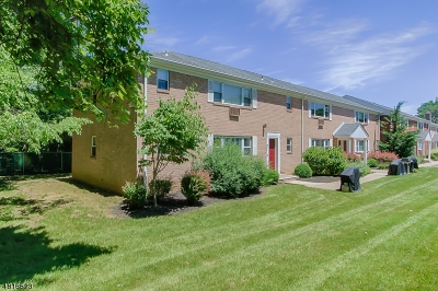 Parsippany-Troy Hills Twp. Condo/Townhouse For Sale: 2467 Route 10 #8A