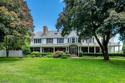 Readington Twp. Single Family Home For Sale: 20 Stanton Mt. Rd.