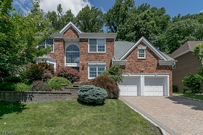 Warren Twp. Single Family Home For Sale: 49 Sycamore Way