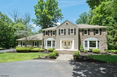 Branchburg Twp. Single Family Home For Sale: 66 Deerfield Trl