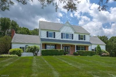 Readington Twp. Single Family Home For Sale: 20 Brier Rd