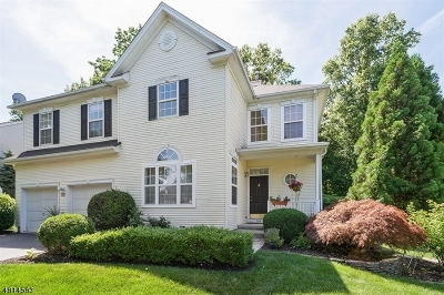 Montgomery Twp. Single Family Home For Sale: 109 York Drive