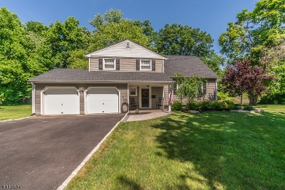 Berkeley Heights Single Family Home For Sale: 227 Chaucer Dr