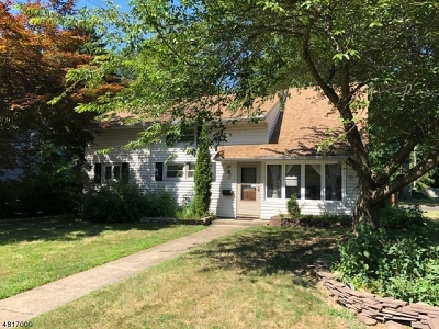 Berkeley Heights Twp. Single Family Home For Sale: 29 Delmore Ave