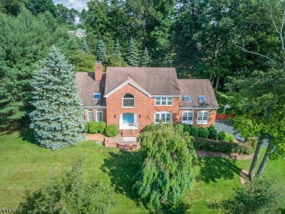 Denville Twp. Single Family Home For Sale: 57 Nicole Dr