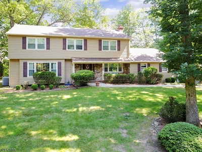 Franklin Lakes Boro Single Family Home For Sale: 895 Hilltop Ter