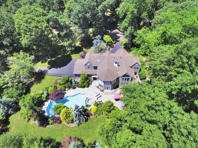 Mendham Boro, Mendham Twp. Single Family Home For Sale: 2 Wooded Acres Ln