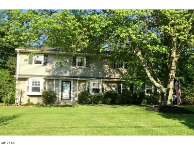 Hillsborough Twp. Single Family Home For Sale: 9 Warner Dr