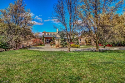 Clinton Twp. Single Family Home For Sale: 28 Allerton Rd
