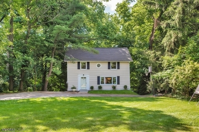 Summit Single Family Home For Sale: 658 Springfield Ave