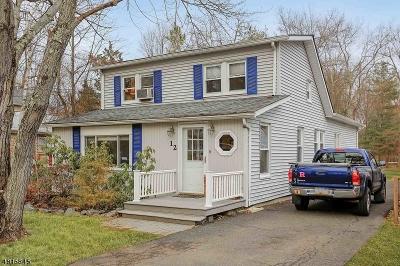 Warren Twp. Single Family Home For Sale: 12 Fairfield Avenue