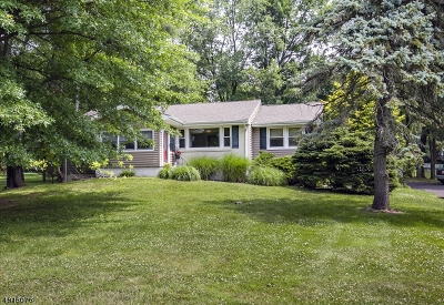 Branchburg Twp. Single Family Home For Sale: 64 Robbins Rd