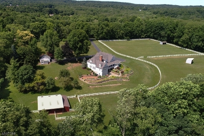 Tewksbury Twp. Single Family Home For Sale: 77 Sutton Rd