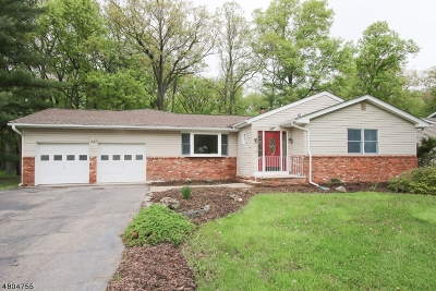Montville Twp. Single Family Home For Sale: 8 Hilldale Rd