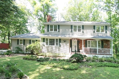 Bridgewater Twp. Single Family Home For Sale: 777 Weemac Rd