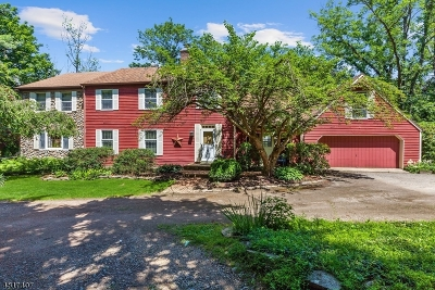 Franklin Twp. Single Family Home For Sale: 89 Cherryville Stanton Rd