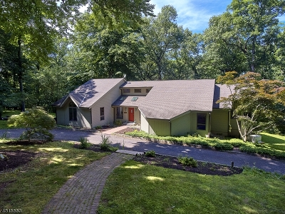 Franklin Twp. Single Family Home For Sale: 238 Hamden River Rd