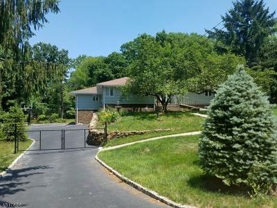 Montville Twp. Single Family Home For Sale: 84 Horseneck Rd