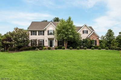 Readington Twp. Single Family Home For Sale: 8 Magriet Rd