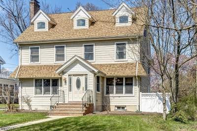 WestField Single Family Home For Sale: 252 Clark St