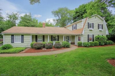 Bernards Twp. Single Family Home For Sale: 14 Bullion Rd