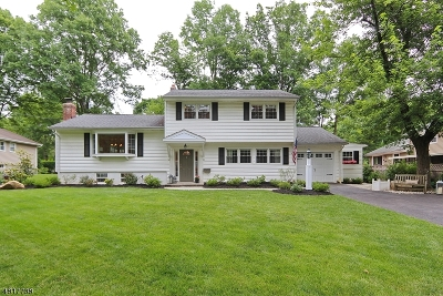 Berkeley Heights Single Family Home For Sale: 120 River Bend Rd