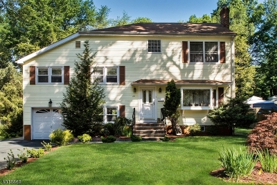 Livingston Single Family Home For Sale: 22 Hampton Ter