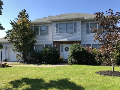 East Hanover Twp. Single Family Home Sold: 7 Natalie Ct