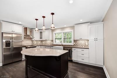 Bernards Twp. Single Family Home For Sale: 44 N Finley Ave