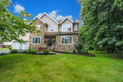 Hillsborough Twp. Single Family Home For Sale: 2 Campbell Rd