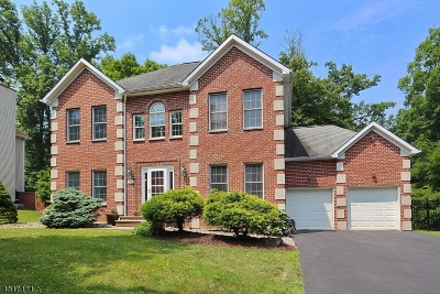 Berkeley Heights Single Family Home For Sale: 20 Kings Ct