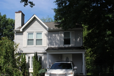Bridgewater Twp. Single Family Home For Sale: 116 Oak St