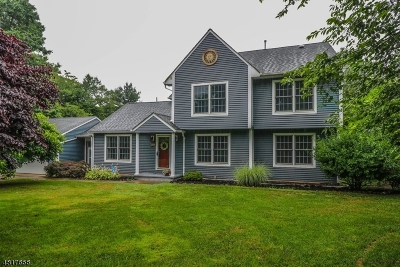 Readington Twp. Single Family Home For Sale: 521 Old York Rd