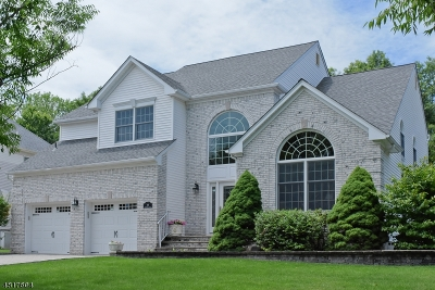 East Hanover Twp. Single Family Home For Sale: 30 Baybury Ct