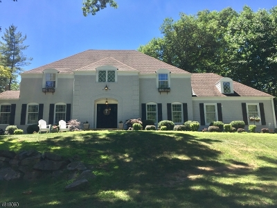 Morris Twp., Morristown Town Single Family Home For Sale: 27 Ketch Rd