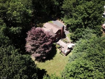Roxbury Twp. Single Family Home For Sale: 22 Timberline Dr