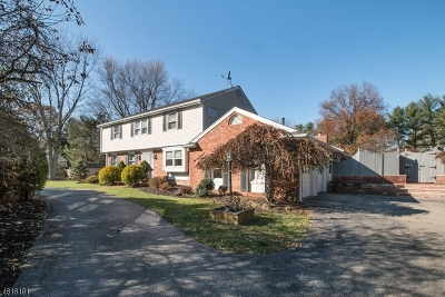 Mendham Boro, Mendham Twp. Single Family Home For Sale: 146 E Mendham Rd