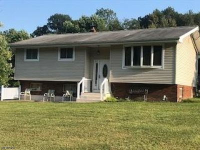 Holland Twp. Single Family Home For Sale: 369 Church Rd
