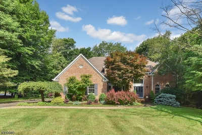 Randolph Twp. Single Family Home For Sale: 9 Fawn Hill Court