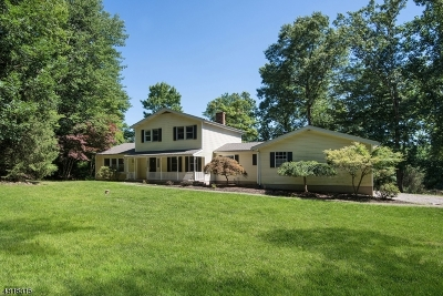 Alexandria Twp., Frenchtown Boro Single Family Home For Sale: 25 Hartpence Rd