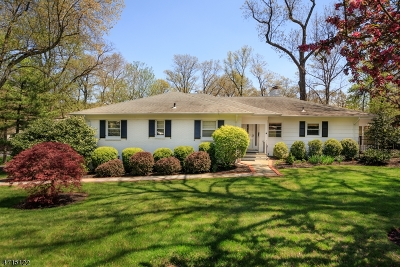 Millburn Twp. Single Family Home For Sale: 101 Old Hollow Rd