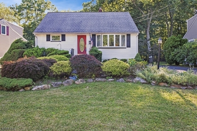 New Providence Single Family Home For Sale: 19 Edward Ct