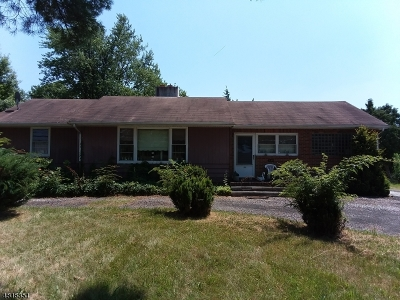Bridgewater Twp. Single Family Home For Sale: 432 Union Ave