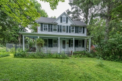 Mendham Boro, Mendham Twp. Single Family Home For Sale: 18 Washington Valley Rd