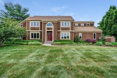 Readington Twp. Single Family Home For Sale: 3 Chamberlain Rd